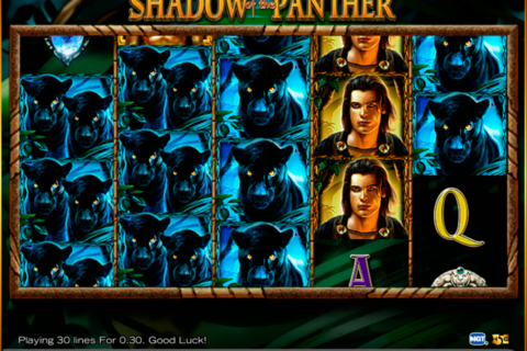 shadow of the panther high